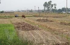 Tỉnh Nghệ An đề nghị hỗ trợ 152 tỷ đồng để chống hạn hán