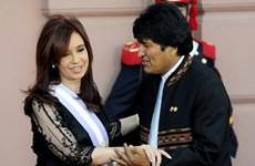 Argentina và Bolivia quyết tâm đánh bại mọi âm mưu đảo chính