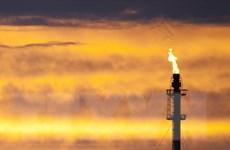 Giá dầu tại New York để tuột mất ngưỡng 50 USD mỗi thùng
