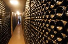 Phát hiện chất độc gây vô sinh trong rượu nhập khẩu từ Mỹ