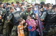 Cảnh sát Hungary bắt giữ hơn 2.500 người di cư tràn vào biên giới