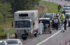 Nghi can trong vụ 71 người di cư chết ngạt tại Áo ra trình diện tòa