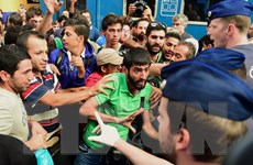 Hàng nghìn người di cư bắt đầu di chuyển từ Hungary vào lãnh thổ Áo