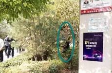 Trung Quốc lại dậy sóng sau khi một cụ ông treo cổ tự tử