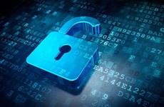 Tổ chức SCO lần đầu tiên diễn tập chống khủng bố mạng
