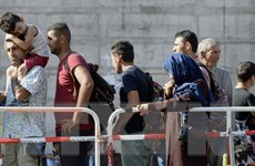 Tiêu dùng và người nhập cư - động lực tăng trưởng kinh tế Đức