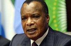 Cộng hòa Congo trưng cầu dân ý về sửa đổi Hiến pháp