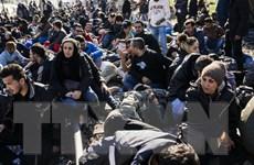 Ngăn chặn dòng người tị nạn không giúp chống khủng bố?