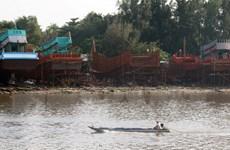 Tạm dừng việc đóng mới hoặc cải hoán tàu làm nghề lưới kéo