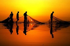 Pakistan bắt giữ 66 ngư dân Ấn Độ cùng 10 tàu đánh cá