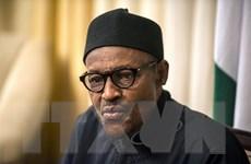 Vẫn chưa có thông tin về 200 nữ sinh Nigeria bị bắt cóc 2 năm trước