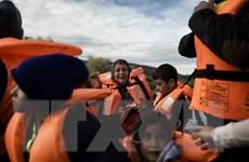 Nhật thông qua gói cứu trợ 350 triệu USD cho người tị nạn Syria, Iraq