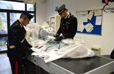 Italy: Một bưu tá bị truy tố vì... không chuyển gần 1 tấn thư