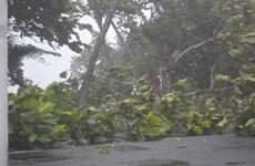 Fiji bắt đầu khắc phục hậu quả do siêu bão Winston gây ra