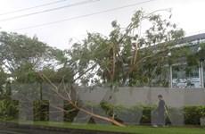 Siêu bão Winston tàn phá Fiji: Số người chết tăng lên 29