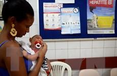 Brazil: Gần 6.000 trẻ sơ sinh và thai nhi nghi mắc bệnh đầu nhỏ