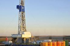 Thị trường dầu mỏ ghi nhận tuần tăng giá thứ hai liên tiếp