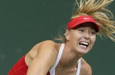 Búp bê quần vợt Nga Maria Sharapova thừa nhận sử dụng doping