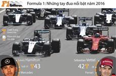[Infographics] Những tay đua nổi bật giải đua F1 trong năm 2016