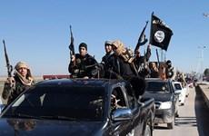 Phó chỉ huy các lực lượng của IS tại miền Nam Syria bị tiêu diệt