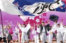 Lễ hội Hanami tại Đà Nẵng - một không gian đậm chất Nhật Bản