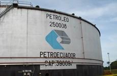 Hệ thống đường ống và nhà máy lọc dầu Ecuador không bị ảnh hưởng