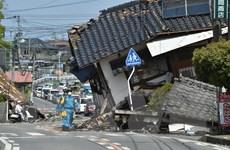 Cập nhật về công tác bảo hộ công dân Việt Nam tại Nhật Bản
