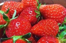 6 loại thực phẩm giúp đẹp dáng, mịn da trong mùa Hè