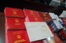 Trưởng ban Tổ chức Thành ủy dùng bằng tốt nghiệp của người khác