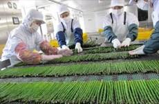 Nhật Bản thu hồi 250.000 túi rau đông lạnh do nhiễm khuẩn