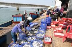 Thiết lập thị trường thủy sản để giải tỏa tâm lý người tiêu dùng