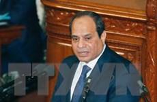 Ai Cập nhấn mạnh giải pháp hai nhà nước đối với Palestine và Israel