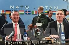 Nga chỉ trích kế hoạch của NATO kết nạp Montenegro