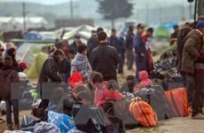 Hy Lạp hoàn tất chuyển người di cư khỏi khu lều trại tại cửa khẩu