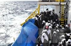 Tiếp tục giải cứu hàng trăm người di cư tại Địa Trung Hải
