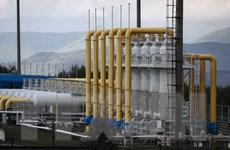 Ukraine có thể lại mua khí đốt của Nga nếu Gazprom thay đổi giá