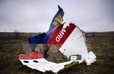 Đức và Thuỵ Sĩ điều tra một thám tử tư liên quan vụ MH17