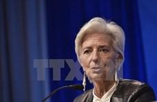 IMF hạ dự báo triển vọng kinh tế Mỹ trong năm 2016