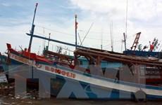 Bình Định kêu gọi ứng cứu tàu cá bị hỏng máy trôi dạt trên biển