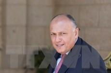 Ngoại trưởng Ai Cập có chuyến thăm hiếm hoi tới Israel
