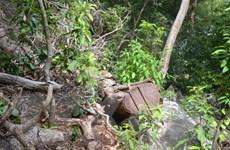 Bắt tạm giam thêm 11 đối tượng trong vụ phá rừng Thủy điện Đồng Nai 5