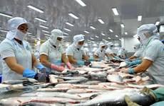 Mỹ nêu lý do cấm nhập khẩu một lô cá da trơn từ Việt Nam