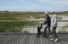 Chính phủ Đức bác bỏ đề xuất nâng tuổi nghỉ hưu lên 69