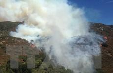 Hàng nghìn người phải sơ tán do cháy rừng ở California