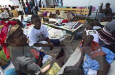 Liên hợp quốc lần đầu tiên thừa nhận liên quan đến dịch tả ở Haiti