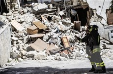 Có người nước ngoài trong 250 nạn nhân thiệt mạng ở động đất Italy