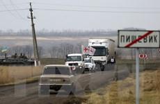Điện Kremlin không loại trừ khả năng đối thoại trực tiếp với Ukraine
