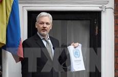 Sức khỏe tinh thần của nhà sáng lập WikiLeaks ngày càng xấu