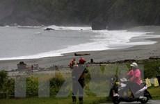 Đài Loan phải hủy gần 200 chuyến bay do bão Malakas