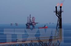 Vietsovpetro lắp đặt thành công khối thượng tầng giàn BK-Thiên Ưng